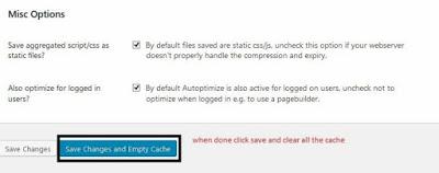 Autoptimize Plugin Misc Option